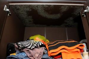 roupas acumuladas criam mofo