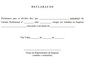 declaracao4